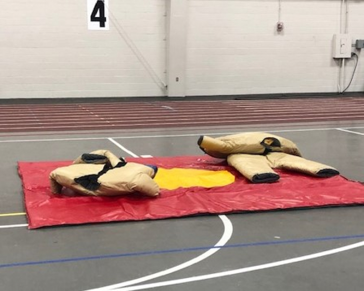 Sumo Wrestler Suits with Mat