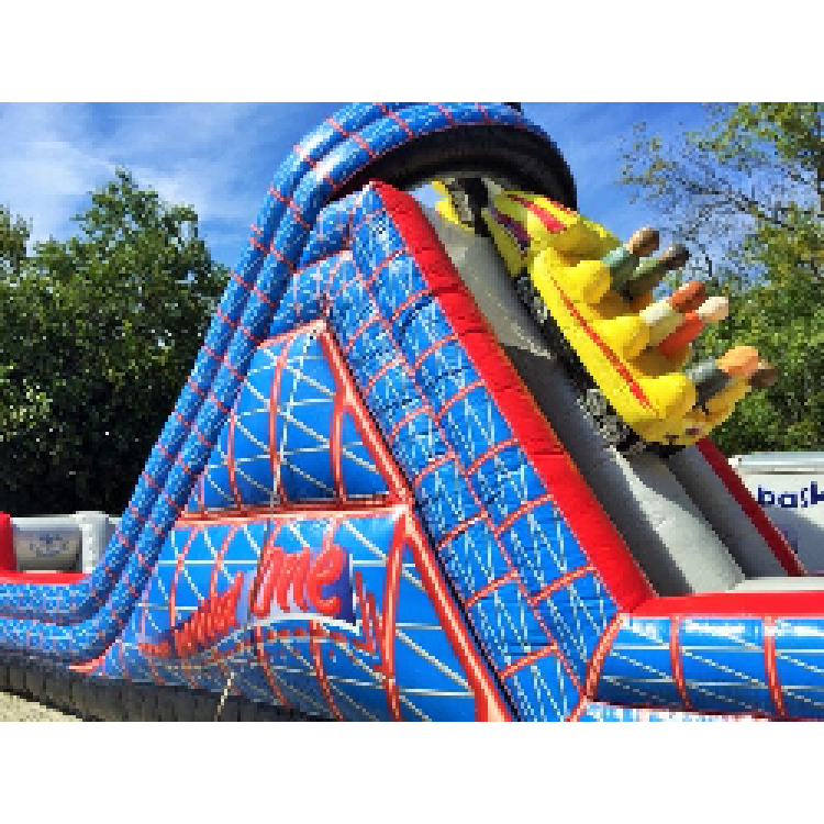 Wild One Slide - WET